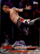 2018 WWE Wrestling Cards (Topps) Heath Slater 36