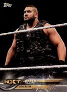 2018 WWE Wrestling Cards (Topps) Rezar 76