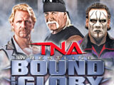 Bound for Glory VI