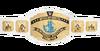 WWE Intercontinental Championship 2014