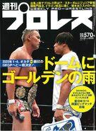 Weekly Pro Wrestling 2035