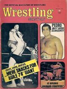 Wrestling Monthly - May 1973