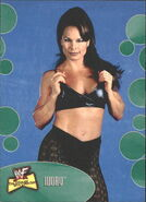 2001 WWF The Ultimate Diva Collection (Fleer) Ivory 38