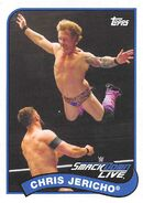 2018 WWE Heritage Wrestling Cards (Topps) Chris Jericho 23