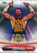 2019 WWE Raw Wrestling Cards (Topps) Zack Ryder 74