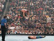 Royal Rumble 2004.3