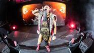 WWE World Tour 2017 - Birmingham 7