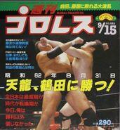 Weekly Pro Wrestling 222