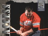 2002 WWF All Access (Fleer) Shane McMahon (No.2)