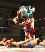 January 5, 2019 Ice Ribbon results (1) 2