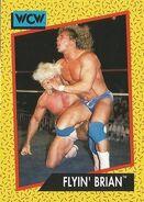 1991 WCW (Impel) Flyin' Brian 64