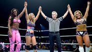 WWE World Tour 2014 - Newcastle.8