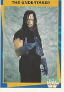 1995 WWF Wrestling Trading Cards (Merlin) Undertaker 28