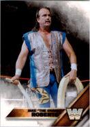 2016 WWE (Topps) Jake Roberts 67