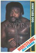 1985 Wrestling All Stars Trading Cards Junkyard Dog 30