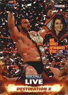 2013 TNA Impact Wrestling Live Trading Cards (Tristar) Destination X 96