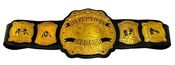 Pacific Coast Wrestling Heavyweight Championship