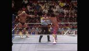 SummerSlam 1990.00044
