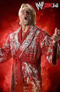 WWE 2K14 Ric Flair Classic