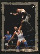2004 WWE Chaos (Fleer) Undertaker 50