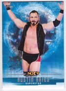 2017 WWE Undisputed Wrestling Cards (Topps) Austin Aries 43