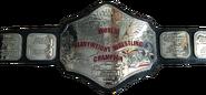 Hogan 84 WWF Championship