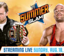SummerSlam 2013/Image gallery