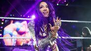 WWE Live Tour 2018 - Dublin 11
