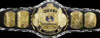 WWF Winged Eagle Championship
