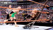 WrestleMania 24.2