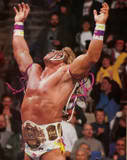Ultimate Warrior6