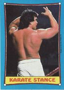 1987 WWF Wrestling Cards (Topps) Karate Stance 43
