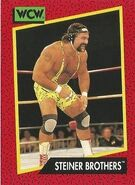 1991 WCW (Impel) Steiner Brothers 105