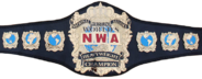 NWA World Heavyweight Championship Severn