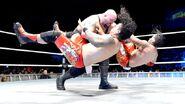 WrestleMania Revenge Tour 2013 - Bologna.9