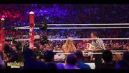Best of WrestleMania Theater.00021