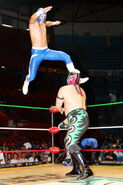 CMLL Domingos Arena Mexico 8-27-17 10