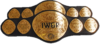 IWGP Tag Team Championship Belt