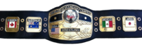 NWA World Championship new