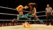 WWE WrestleMania Revenge Tour 2014 - Glasgow.11