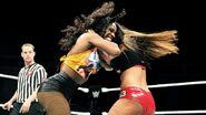 WrestleMania Revenge Tour 2015 - Cardiff.13
