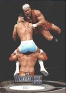 2003 WWE WrestleMania XIX (Fleer) Billy 8