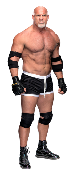 Bill Goldberg | Pro Wrestling | FANDOM powered by Wikia