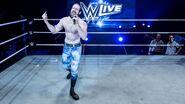 WWE Live Tour 2017 - Bournemouth 8