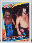1992 WCW Trading Cards (Topps) The Fabulous Freebirds 15