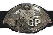 IWGP Jr. Champion