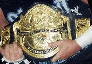 MCW Heavyweight original