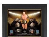 "Randy Orton ""Grand Slam Champion"" 23 x 27 Framed Plaque w Ring Canvas"