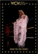 1991 WCW Collectible Trading Cards (Championship Marketing) Ric Flair 79