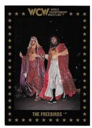 1991 WCW Collectible Trading Cards (Championship Marketing) The Fabulous Freebirds 32